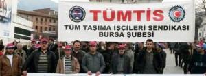 tumtis_bursa